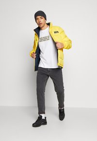 Tommy Jeans - DAD STRAIGHT - Jean droit - aries - 1
