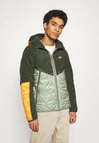 Nike Sportswear - WINTER - Winter jacket - vintage green/spiral sage/kumquat - 0