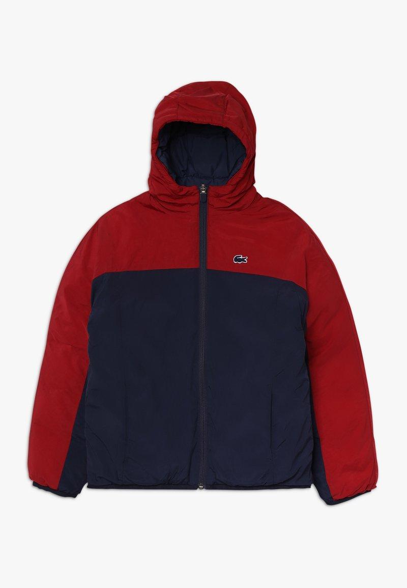 Lacoste - BLOUSON - Winter jacket - bordeaux/navy blue