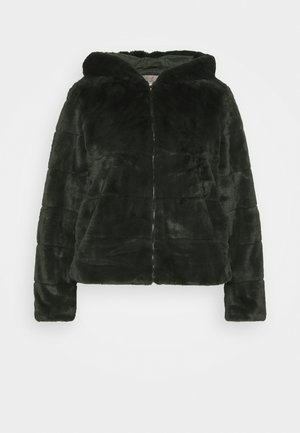 CARCHRIS HOODED JACKET - Light jacket - dark green