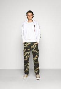 Dickies - EDWARDSPORT - Cargo trousers - olive/beige - 1