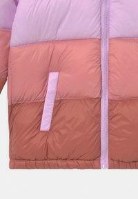 Cotton On - FRANKIE PUFFER - Winter coat - tulip splice - 2