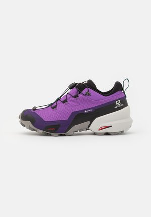 CROSS HIKE GTX - Hiking shoes - royal lilac/frost gray/deep teal