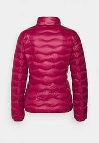 EA7 Emporio Armani - JACKET - Light jacket - beet red - 1