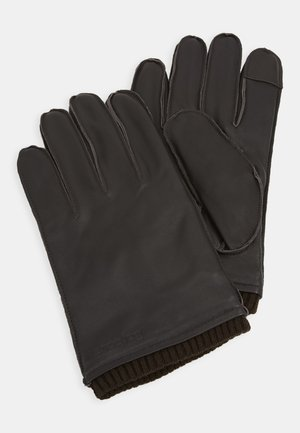 BAMPTON GLOVES - Rukavice - dark brown