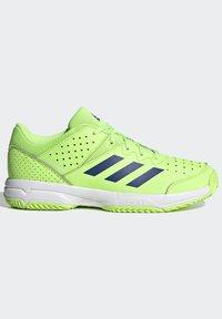 adidas Performance - COURT STABIL UNISEX - Handball shoes - siggnr/royblu/ftwwht - 8