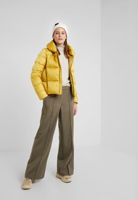 Colmar Originals - Down jacket - rich - 1