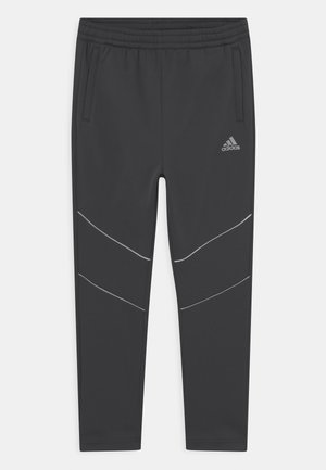 WARM EXCITE - Tracksuit bottoms - grey
