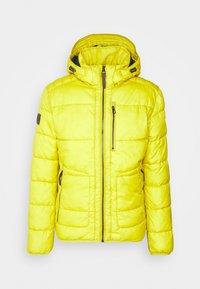 camel active - Zimní bunda - yellow - 0