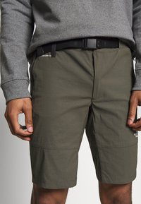 The North Face - MENS LIGHTNING - Friluftsshorts - new taupe green - 3