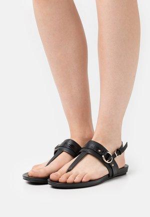 PANDRA - Flip Flops - black