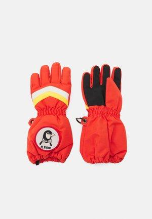 SKI GLOVE - Handschoenen - red