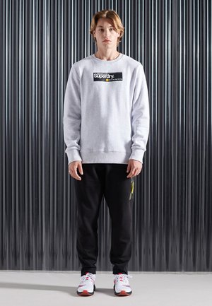 CORE LOGO - Sweater - ice marl
