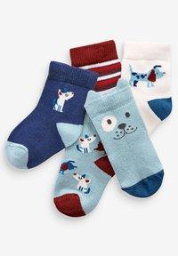 Next - 5 PACK DOG - Ponožky - blue - 6
