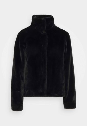 FALESA - Winter jacket - black