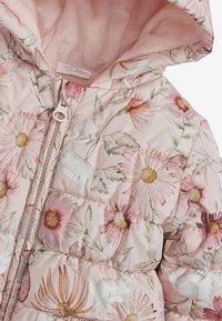 Next - FLORAL CHARACTER PRINT HOODED - Chaqueta de plumas - pink - 2