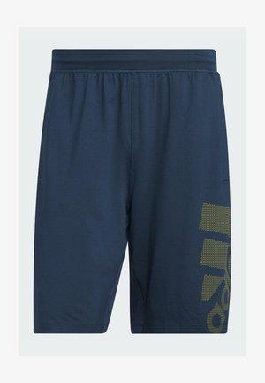 4KRFT SPORT GRAPHIC SHORTS - Sports shorts - blue