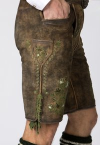 Stockerpoint - MICHEL - Shorts - brown - 5