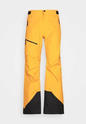 VERTICAL 3L PANTS - Snow pants - blaze tundra