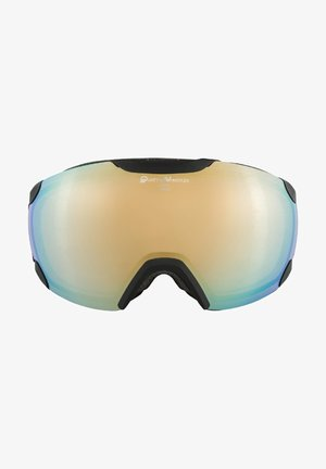 PHEOS QVM - Masque de ski - black matt