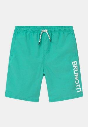 HESTER - Shorts da mare - neo mint