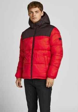 JJDREW  - Winter jacket - red dahlia