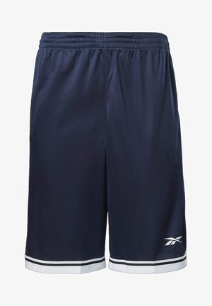 WORKOUT READY MESH SHORTS - Sports shorts - blue