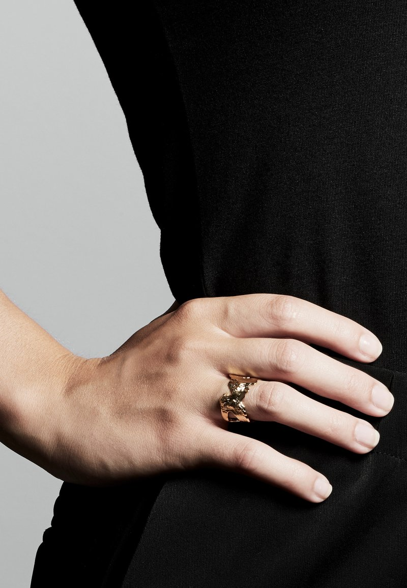 Pilgrim - COMPASS - Ring - gold plated
