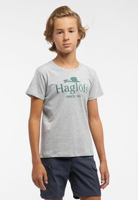 Haglöfs - CAMP TEE - Print T-shirt - grey - 0