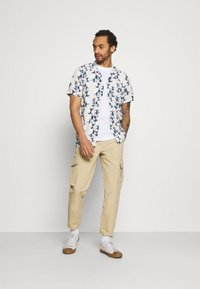 Redefined Rebel - PASCAL PANTS - Cargo trousers - traventine - 1