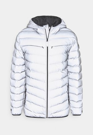 OUTERWEAR - Winter jacket - silver