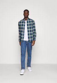 Tommy Jeans - OXFORD CHECK - Camicia - providence blue/multi - 1