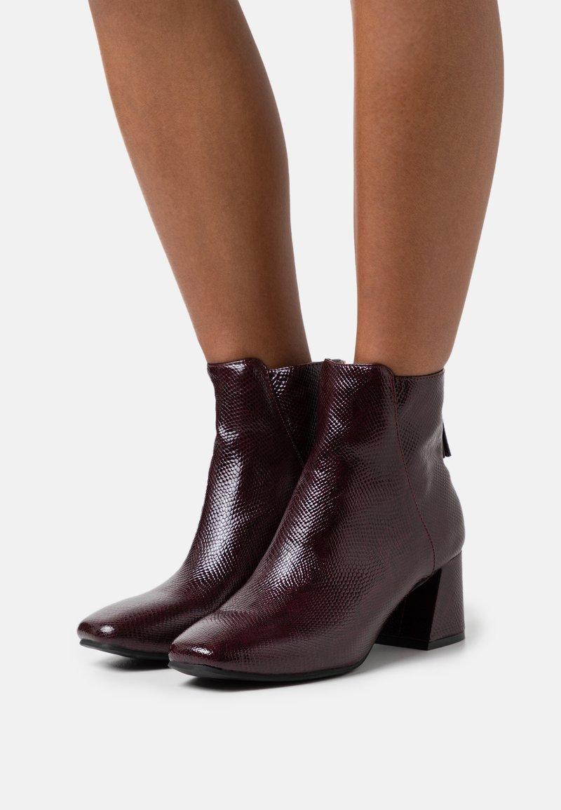 Miss Selfridge - BRICKS SQUARE TOE FLARED BLOCK HEEL BOOT - Classic ankle boots - burg lizard