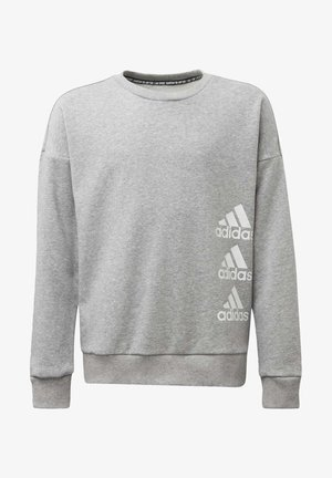 MUST HAVES CREW SWEATSHIRT - Sweater - grey