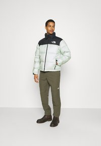 The North Face - RETRO UNISEX - Down jacket - green mist - 1