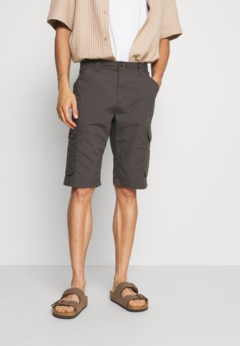 LIGHTWEIGHT CARGO - Shorts - tarmac grey