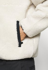 Obey Clothing - THIEF JACKET - Winter jacket - natural - 4