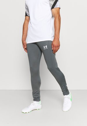 CHALLENGER TRAINING PANT - Træningsbukser - pitch gray/white