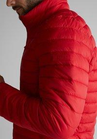 Esprit - RECTHINS  - Winter jacket - red - 5