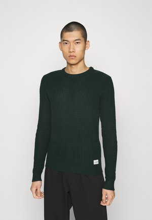 JCOSTRONGER CREW NECK - Stickad tröja - darkest spruce