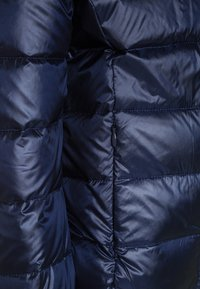 Guess - REAL CORE - Down jacket - bleu/fancy blue - 2