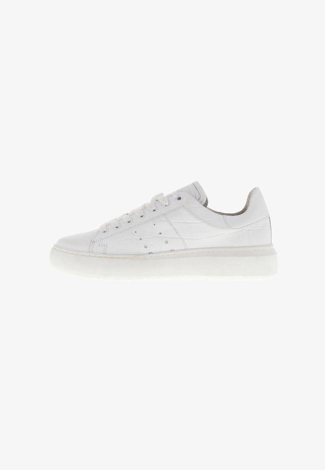 INGEBORG - Sneakers laag - creme weiß