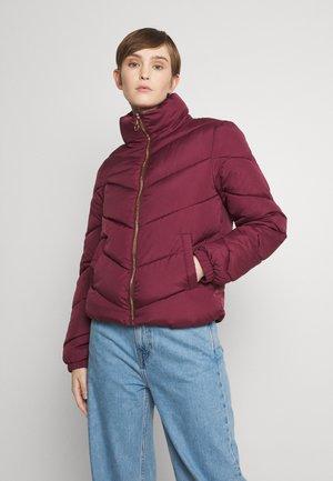 Winter jacket - windsor wine