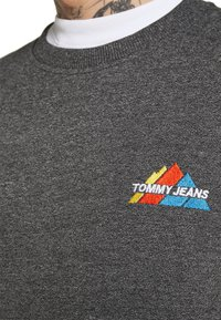 Tommy Jeans - MOUNTAIN GRAPHIC CREW - Sweatshirt - black heather - 5
