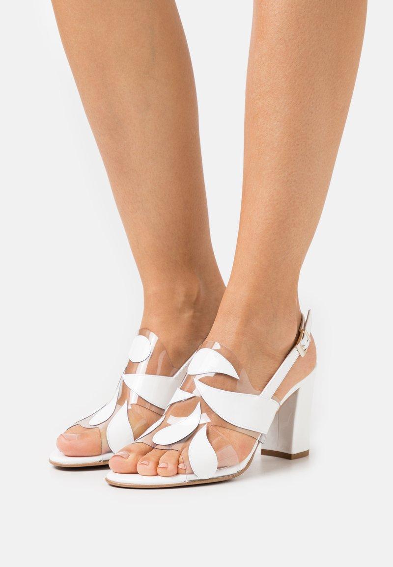 Brenda Zaro - PORTU - Sandaler - white