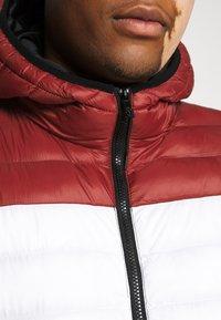 Jack´s Sportswear - PUFFER JACKET - Winter jacket - red - 5