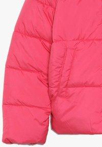 Name it - NKFMISTI ZIP JACKET - Zimní bunda - raspberry sorbet - 2