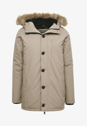 CHEETAH - Winter jacket - stone