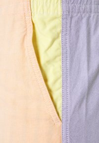 Polo Ralph Lauren - CLASSIC FIT PREPSTER - Shorts - solid colorblock - 2