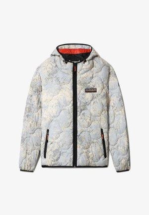 MERCURY - Light jacket - grey leaf